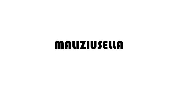 logo maliziusella